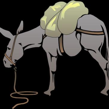 Histoire à méditer…Le paysan et ses 3 ânes